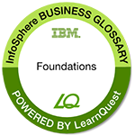 LearnQuest IBM InfoSphere Business Glossary Essentials
